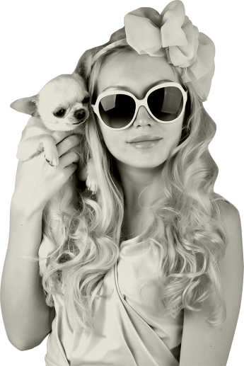 girl-with-chihuahua-345x517